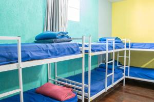 Single Bed in Mixed Dormitory Room (14 adults)
