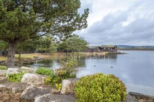 Pine Lake By Diamond Resorts, Resorts  Carnforth - big - 1
