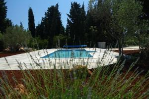 Olive Apartments, Appartamenti  Ugljan - big - 66