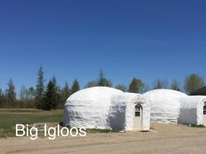 Igloo (4 Adults)