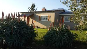 Two-Bedroom Cottage  - Shiraz