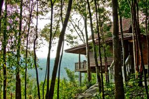Chestnut Hill Eco Resort, Bed and Breakfasts  Hat Yai - big - 5