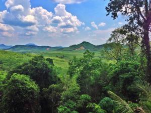 Chestnut Hill Eco Resort, Bed and Breakfasts  Hat Yai - big - 4