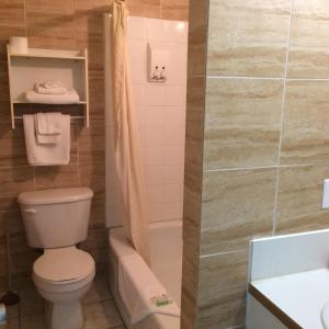 Single Room with Private Bathroom - Non Smoking