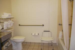 King Suite - Disability Access/Bath Tub
