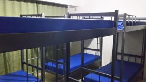 Bunk Bed in 8-Bed Mixed Dormitory Room with Air Conditioning