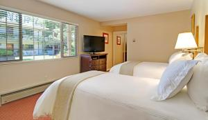 Economy Double or Twin Room - Pet Friendly
