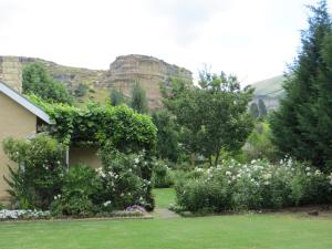 Millpond House, Guest houses  Clarens - big - 47