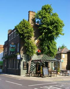 The Red Cow - Guest House in Richmond upon Thames, Greater London, England