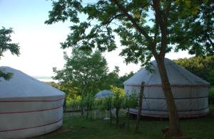 Almond Grove Yurt Hotel, Zelt-Lodges  Ábrahámhegy - big - 21