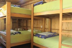 Bed in 6-Bed Dormitory Room with Garden View