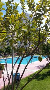 Apartment Hannibal Benidorm, Apartmanok  Cala de Finestrat - big - 17