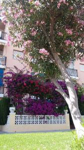 Apartment Hannibal Benidorm, Apartmanok  Cala de Finestrat - big - 19