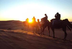 Camel Bivouac Merzouga, Luxury tents  Merzouga - big - 29