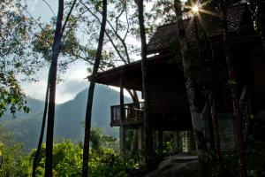 Chestnut Hill Eco Resort, Bed and Breakfasts  Hat Yai - big - 33