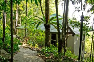 Chestnut Hill Eco Resort, Bed and Breakfasts  Hat Yai - big - 31