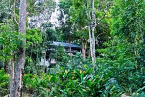 Chestnut Hill Eco Resort, Bed and Breakfasts  Hat Yai - big - 15