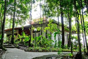 Chestnut Hill Eco Resort, Bed and Breakfasts  Hat Yai - big - 17