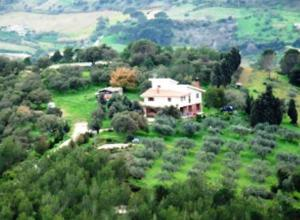 Villa Del Bosco