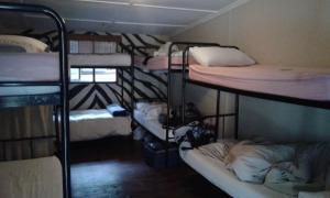 Bed in 8-Bed Mixed Dormitory Room en-suite