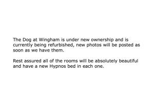 The Dog at Wingham in Wingham, Kent, England