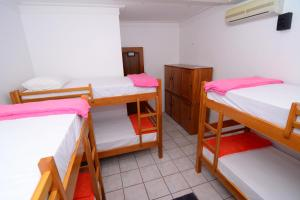 Bunk Bed in Female Dormitory Room with Air Conditioning