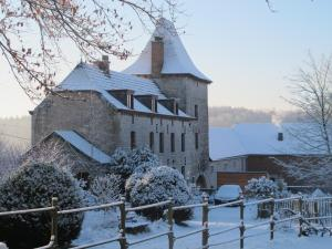B&B Le Manoir d'Ange, Bed and breakfasts  Ferrières - big - 52