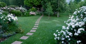 Millpond House, Guest houses  Clarens - big - 50