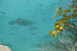 Villa D'Aquino, Bed & Breakfasts  Tropea - big - 36