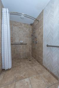 Junior King Suite - Disability Access with Roll-In Shower/Non-Smoking