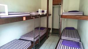 Bed in 7-Bed Female Dormitory Room with Fan