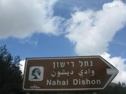 Holiday in Moshav Dishon, Лоджи  Dishon - big - 19