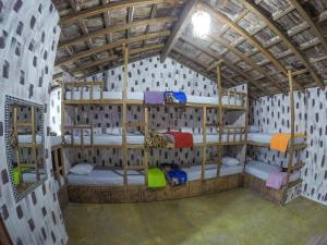 Bunk Bed in Mixed Dormitory Room 13 beds with Bathroom