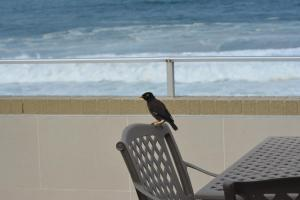 Frinton on Sea4, Apartmanok  Ballito - big - 6