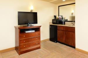 Executive One-Bedroom King Suite - Non-Smoking
