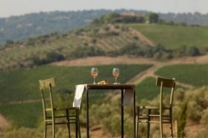 Casale Sterpeti, Bed and Breakfasts  Magliano in Toscana - big - 22