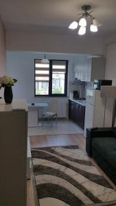 Palas Apartments, Apartmány  Iaşi - big - 7