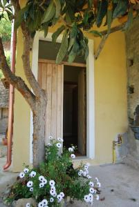 Al Melograno B&B, Bed & Breakfast  Belmonte Calabro - big - 9