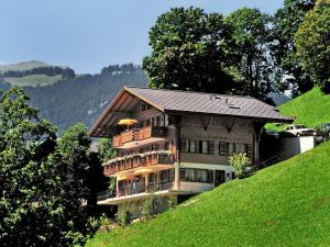 Apartment Aphrodite.1, Apartments  Grindelwald - big - 1