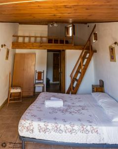 A Taverna Intru U Vicu, Bed and Breakfasts  Belmonte Calabro - big - 29