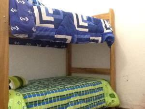 Bunk Bed in Mixed Dormitory Room - 3 Beds