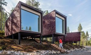 Arctic TreeHouse Hotel - 19 of 24