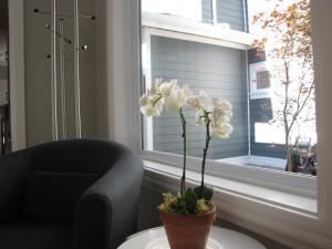 Riverfront Bed and Breakfast, Bed and breakfasts  North Vancouver - big - 27