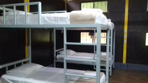 Single Bed in  6 women -Bed Dormitory Room