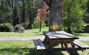Saladin Lodge, Bed & Breakfasts  Narbethong - big - 23