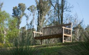Saladin Lodge, Bed & Breakfasts  Narbethong - big - 32