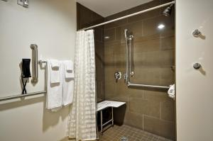 Ada Room Shower