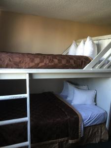 1 Bed in 4-Bed Mixed Dormitory Room