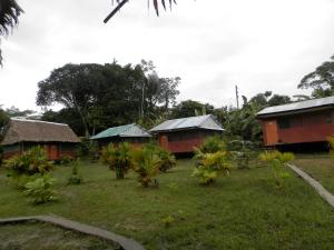 Amazon Eco Tours & Lodge, Hostely  Santa Teresa - big - 29