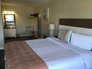 King Room - Pet-Friendly